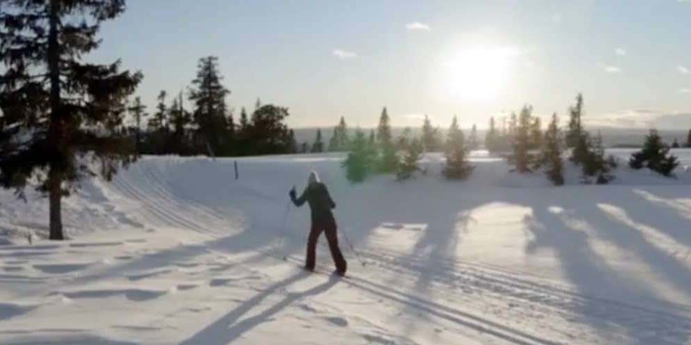 ZDF | Christmas in the Snow