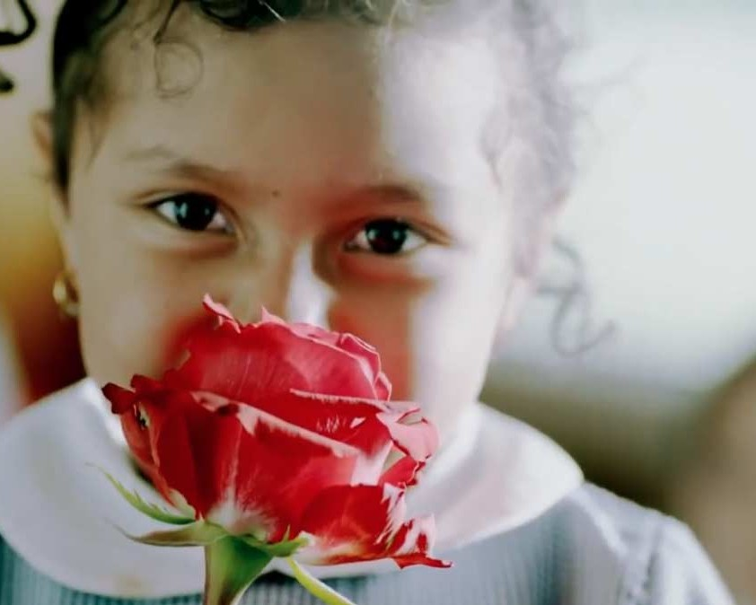 H-E-B | Floral Department