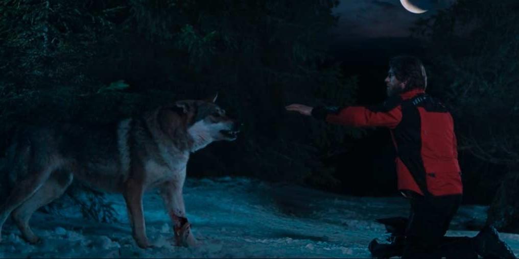 Stalinskaya | Wolf