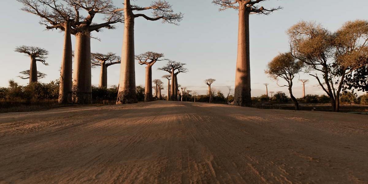 Madagascar | Location