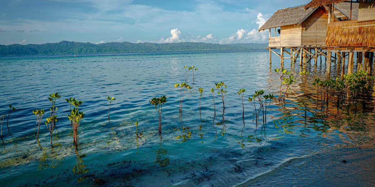Papua New Guinea | Location