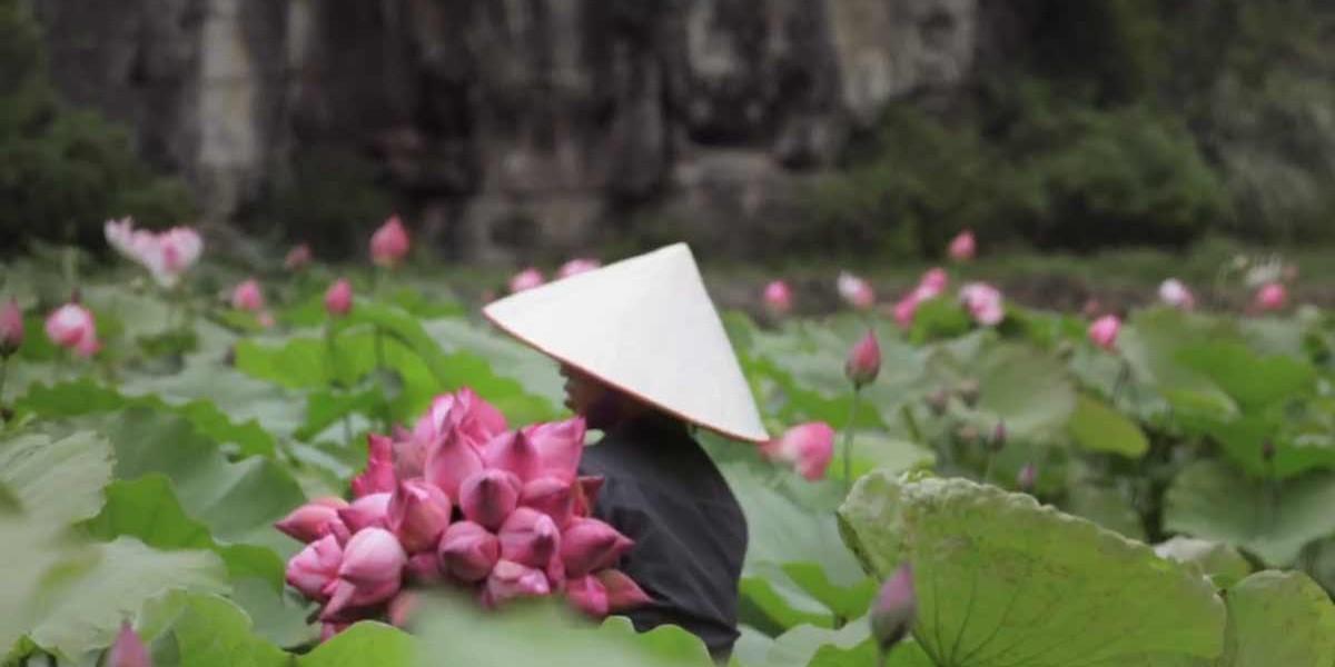 LVMH, Fresh Beauty | Lotus Mask