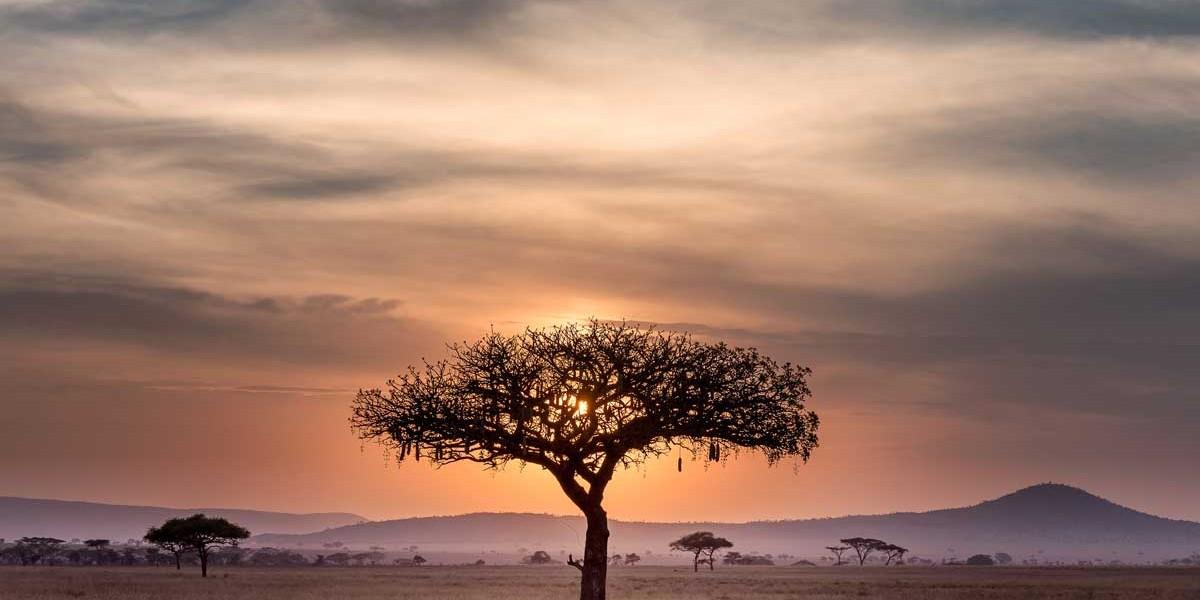 Tanzania | Location